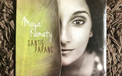 Conseil musical du lundi #5 : Maya Kamaty
